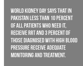 kidney-d